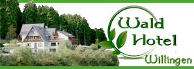 Waldhotel Willingen